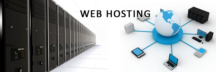Web Hosting Evaluation